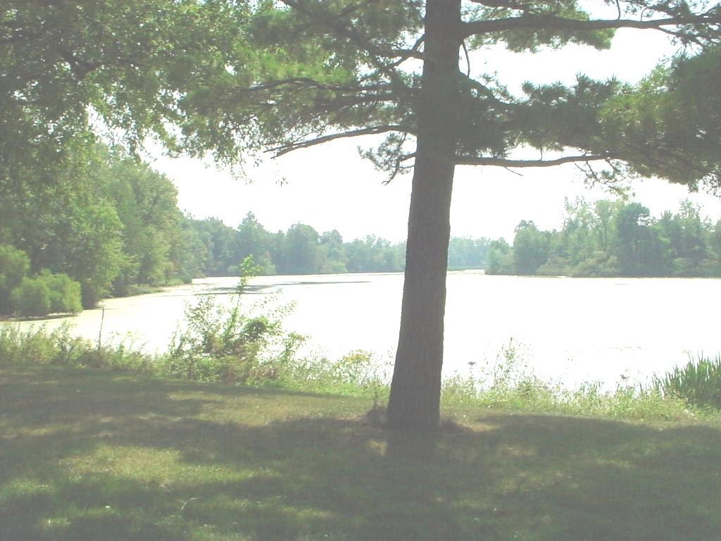Moser Lake